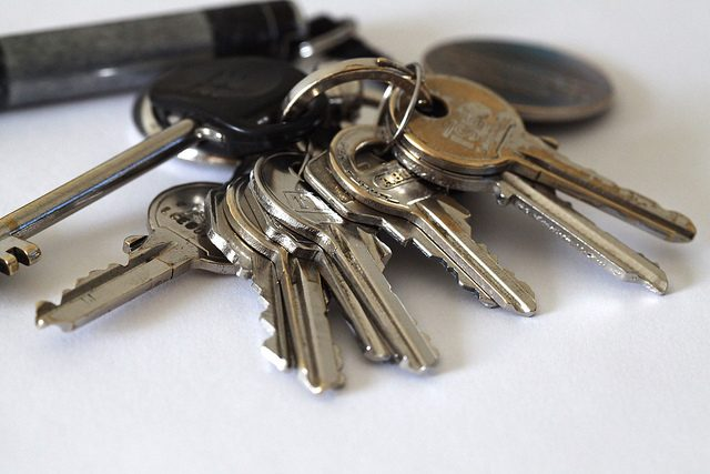 Key ring with auto home and business keys
